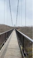 つつじ吊り橋
