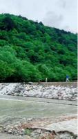 尾白川渓谷