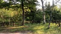 ふるさと村自然園せいなの森キャンプ場