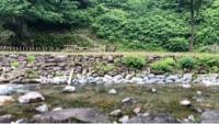 瀬波川キャンプ場