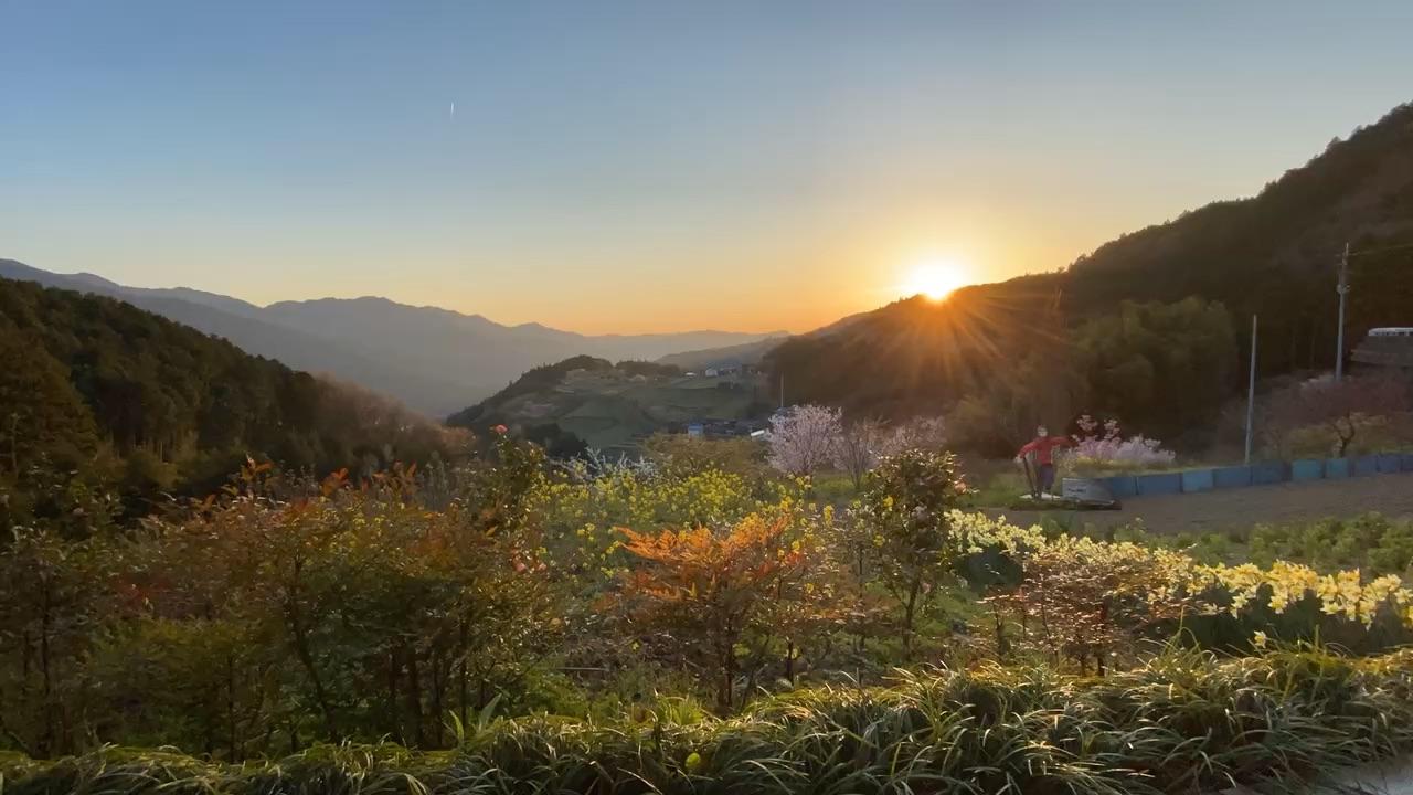 野村夕陽の丘